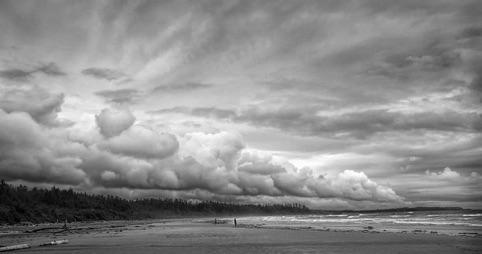 "Vancouver Island Beach ""Landscapes, Seascapes, and Urbanscapes"" Pacific Art League October 2013"